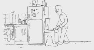 gato-simon-comida-lixo