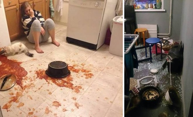 Os piores momentos em cozinhar (32 fotos) 5