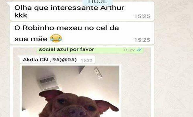Conversando com o cachorro 2