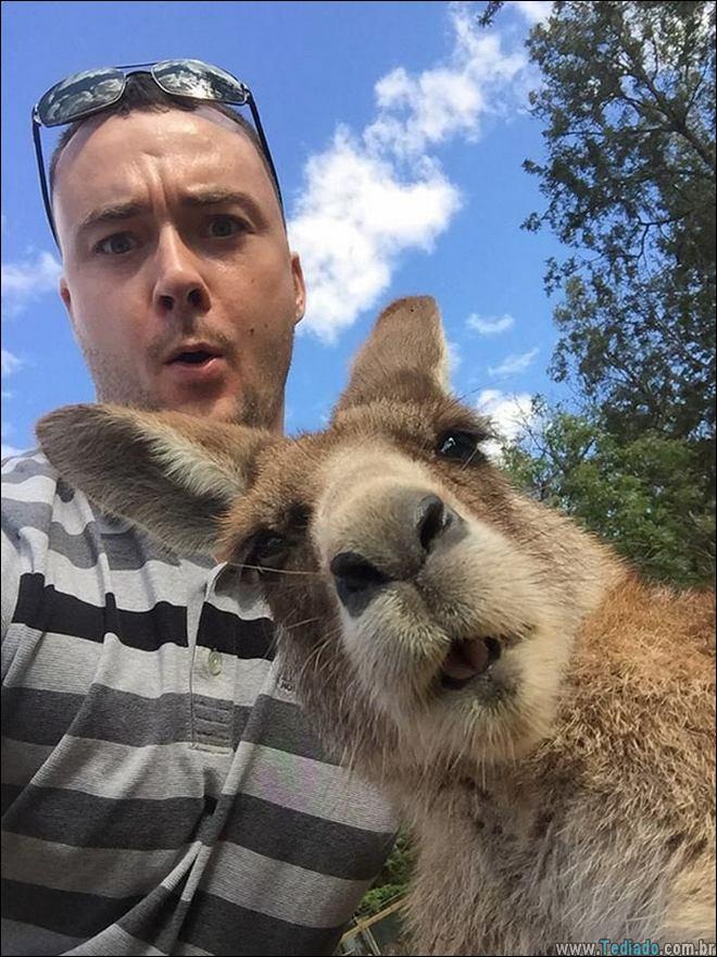 26 Selfies de animais que o farão sorrir 9