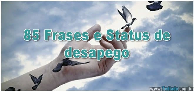 Photo of 85 Frases e Status de desapego