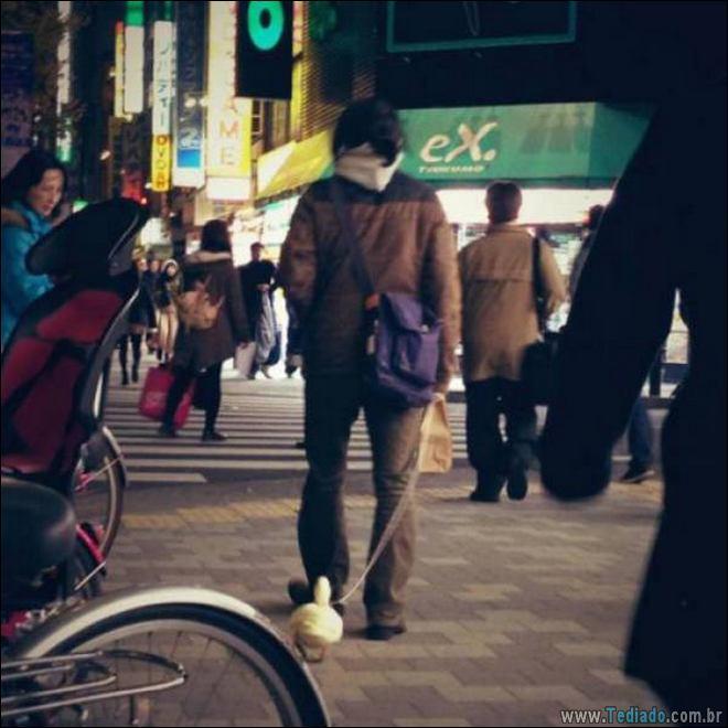 Japão local de coisas diferentes (28 fotos) 2