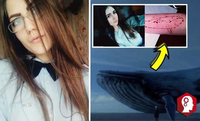 Tudo sobre o desafio da baleia azul 7