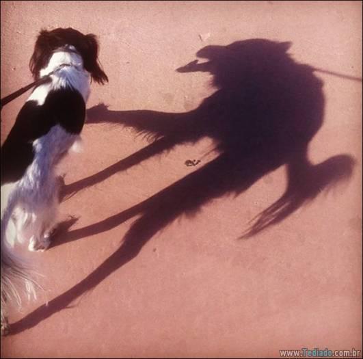 31 sombras incríveis que o farão olhar duas vezes 23