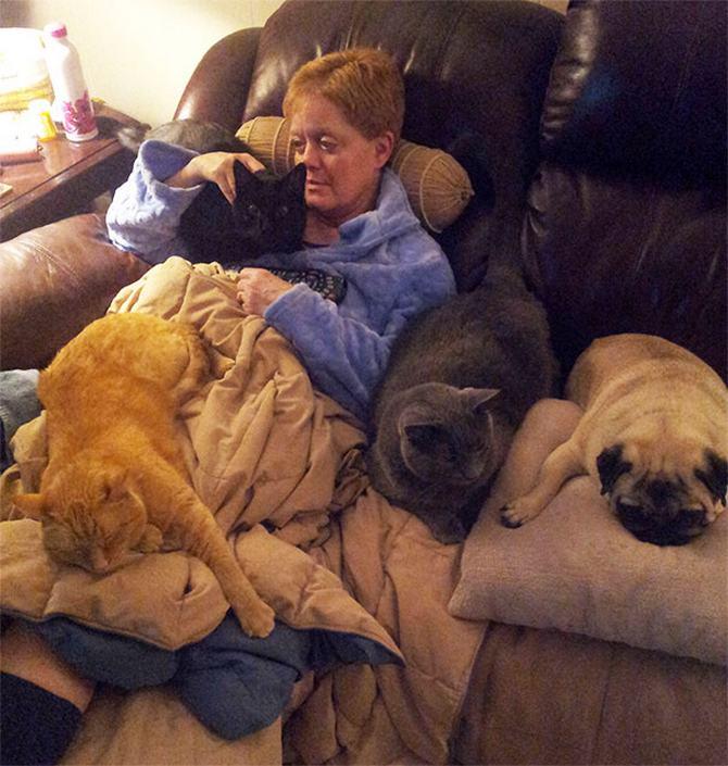 36 pessoas que vivem com mais de 3 animais de estimação revelam que é muito divertido 36