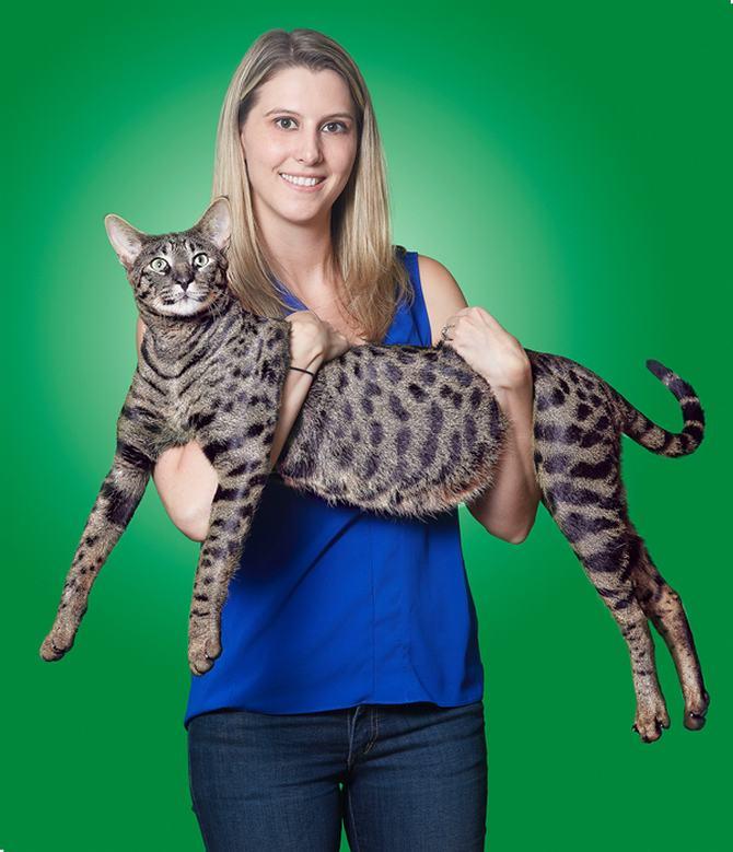 8 gatos únicos na Internet 3