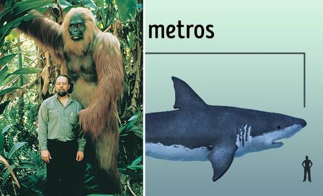 6 maiores animais que já passaram pela Terra 4