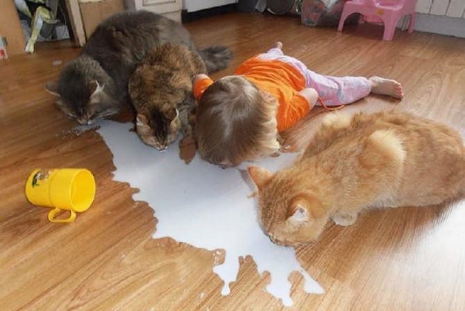 18 provas divertidas que as crianças vivem com regras diferentes 9