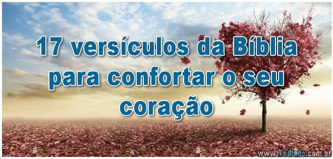 17 versículos da Bíblia para confortar o seu coração 6