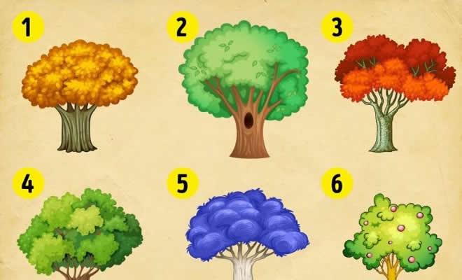 9 árvores, escolha uma e descubra as mudanças que você precisa fazer no ano novo 2