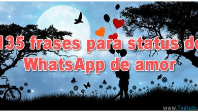 135 frases para status do WhatsApp de amor