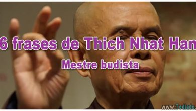 36 frases de Thich Nhat Hanh – Mestre budista - frases de thich nhat hanh mestre budista 390x220
