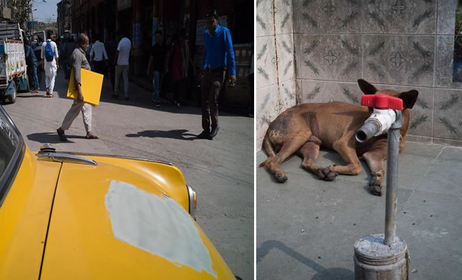 29 incríveis coincidências de fotos tiradas nas ruas pelo mundo 5