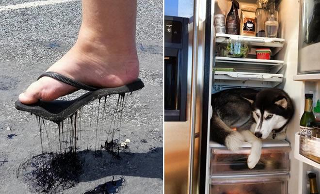 Quando o calor está demais (23 fotos) 3