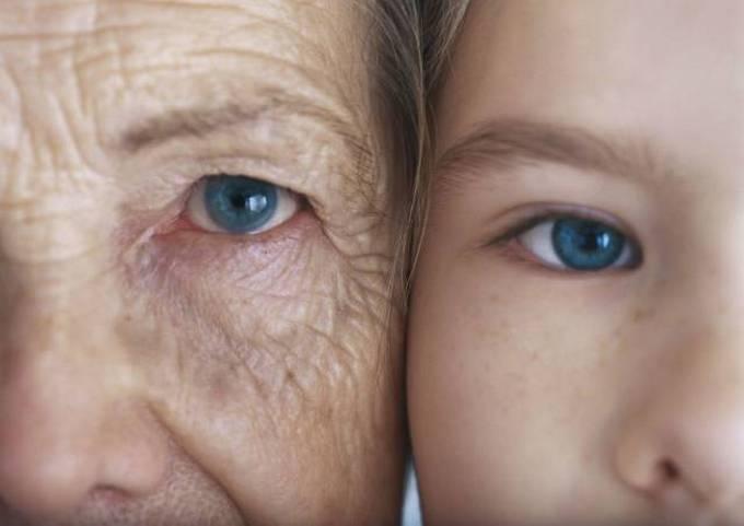 Bons exemplos quando uma imagem diz mais que mil palavras (30 fotos)