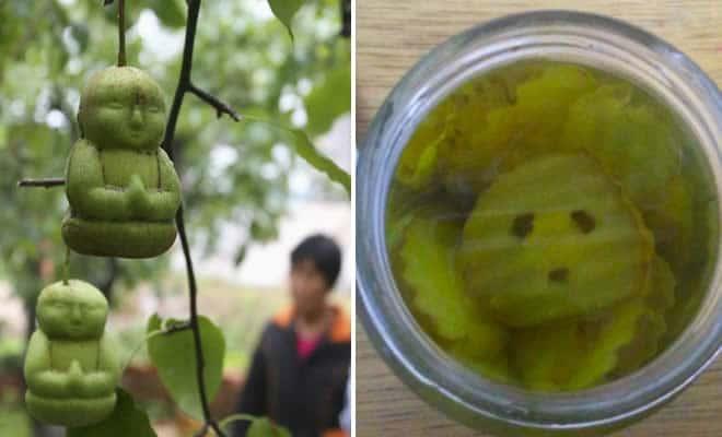 18 vegetais que parecem humanos 3