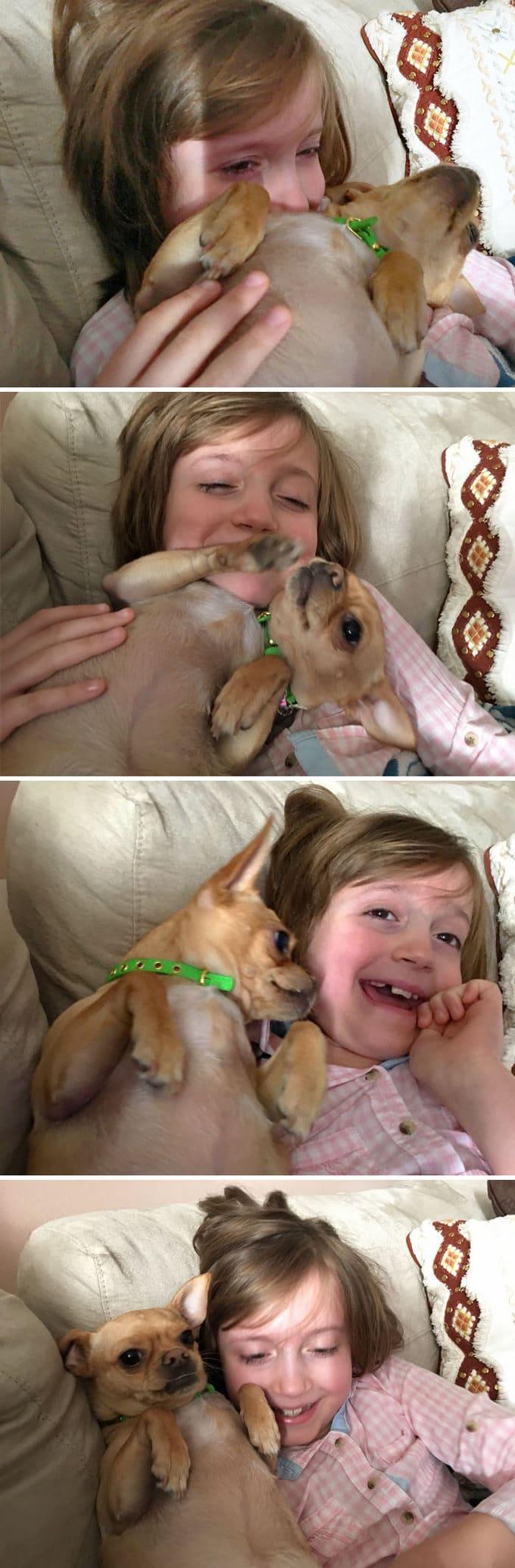 26 exemplos de amor de cachorro incondicional que vai derreter seu coração 13