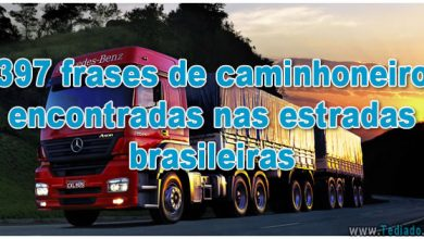 397 frases de caminhoneiro encontradas nas estradas brasileiras - frases de caminhoneiro encontradas nas estradas brasileiras 390x220
