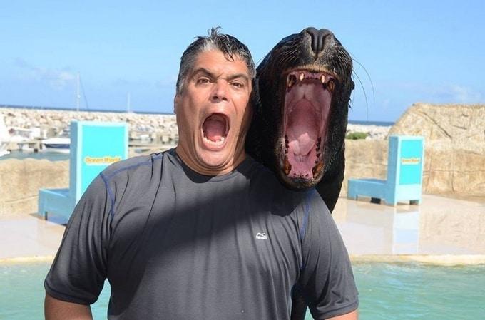 22 animais que definitivamente não estão preparados para ter sua foto tirada 11