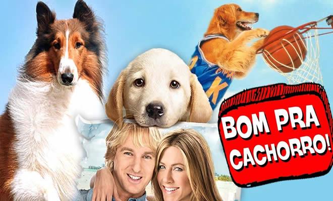 8 cachorros mais legais do cinema! 28