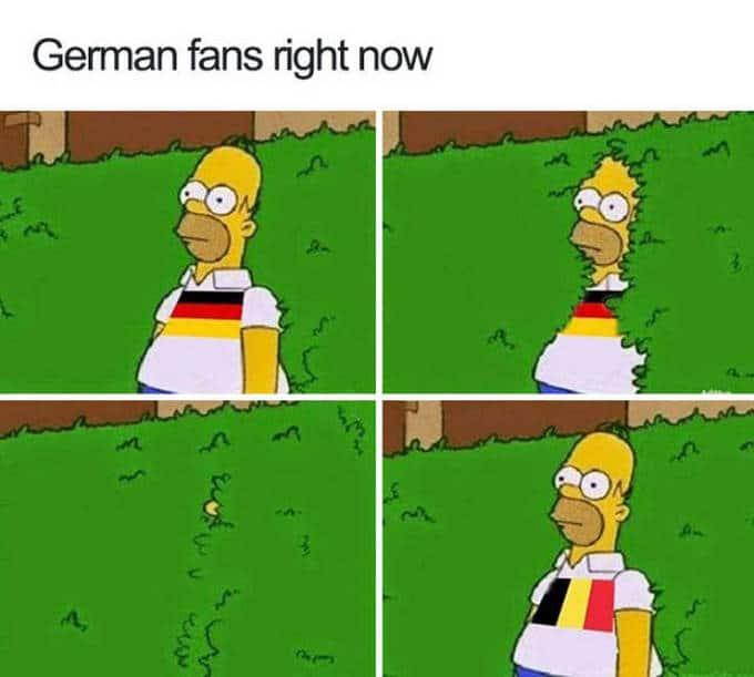 Copa do mundo de 2018 já gerou um monte de Memes (30 fotos) 25