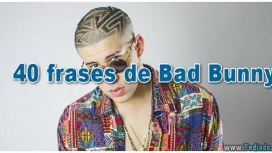 Photo of 40 frases de Bad Bunny