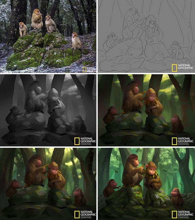 Artista transforma imagens da National Geographic em ilustrações adoráveis (9 fotos) 7