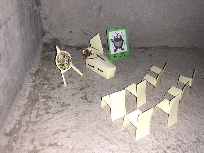 A mini-série de uma barata que morre no vão das escadas 10
