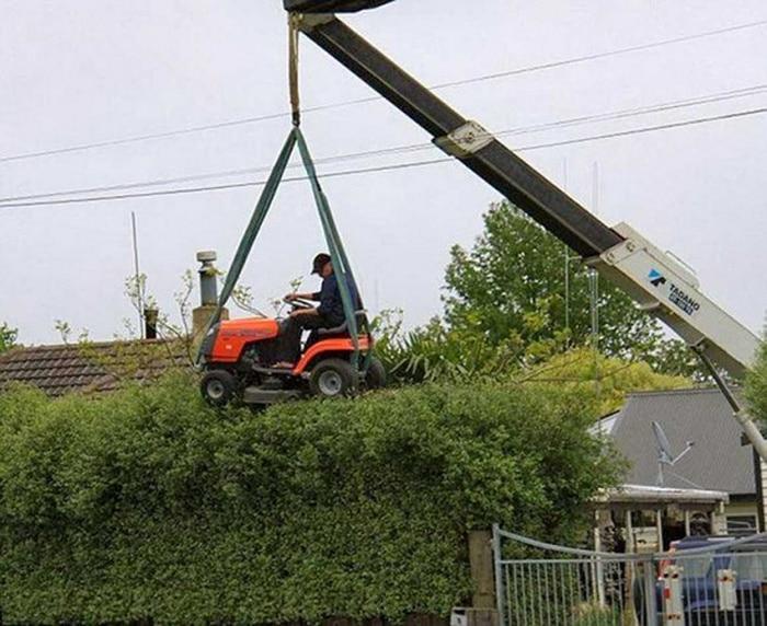 Aventuras de jardineiro: volume 2.0