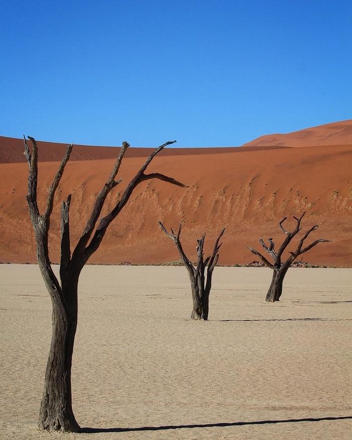O deserto perfeito de Vlei Morto, Namíbia.