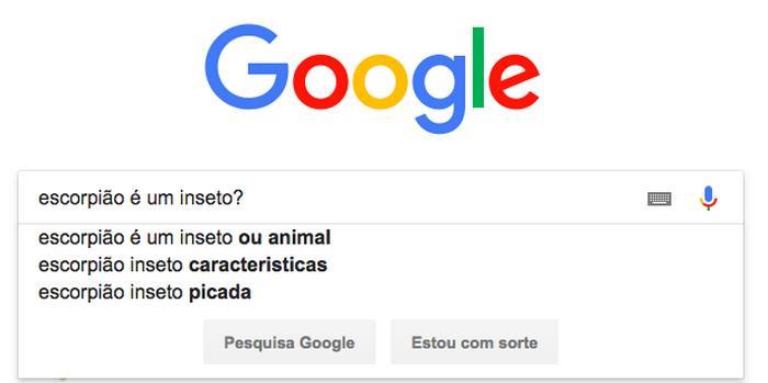 12 pesquisas doidas já feitas no Google 7