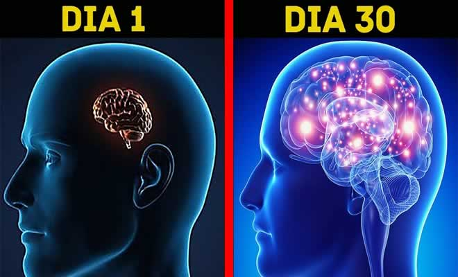 5 truques simples que melhorarão seu cérebro 7