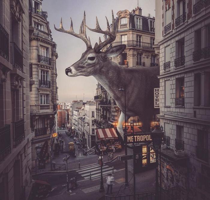 37 manipulações de fotos surreais que desafiam a lógica 4
