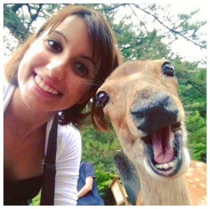 20 pessoas que estão fazendo selfies como um profissional 10