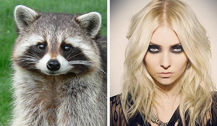 18 animais que se parecem exatamente com algumas celebridades 4