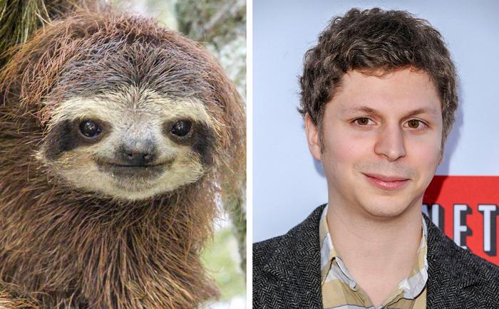 18 animais que se parecem exatamente com algumas celebridades 10