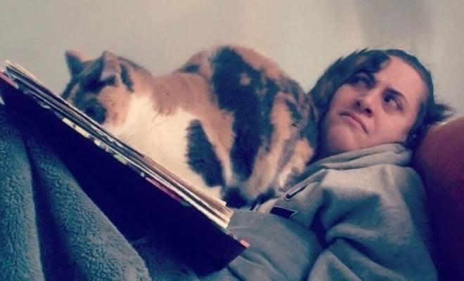 Dicionário do gato, para você entender melhor seu bichano