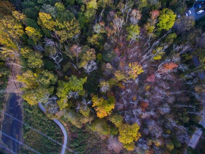 20 incríveis fotos feitas com drones 19