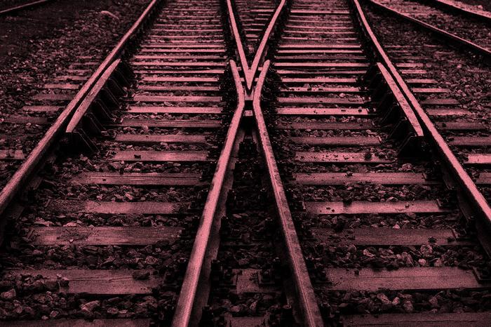5 dilemas morais: o que você faria? 2