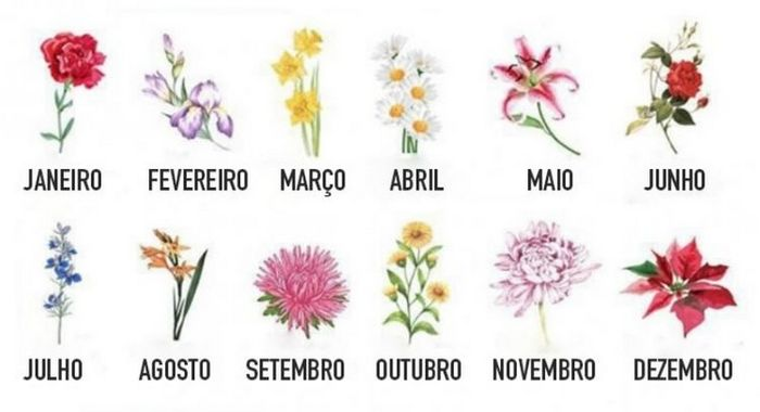 A flor do seu aniversário vai revelar quem você realmente é 1