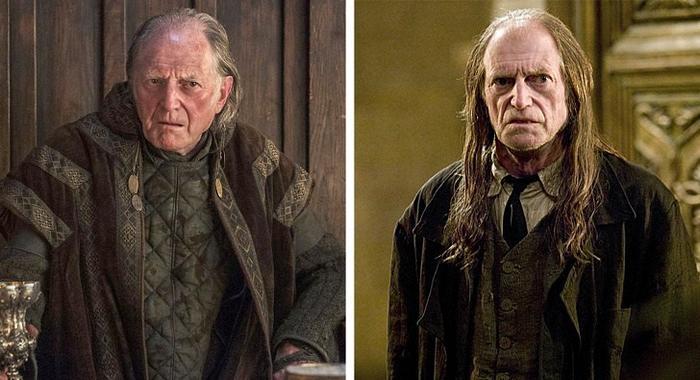 13 atores de Game of Thrones que estrelaram em Harry Potter 7