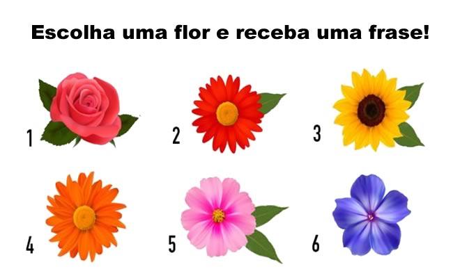 Receba uma frase de encorajamento de acordo da flor que você escolheu