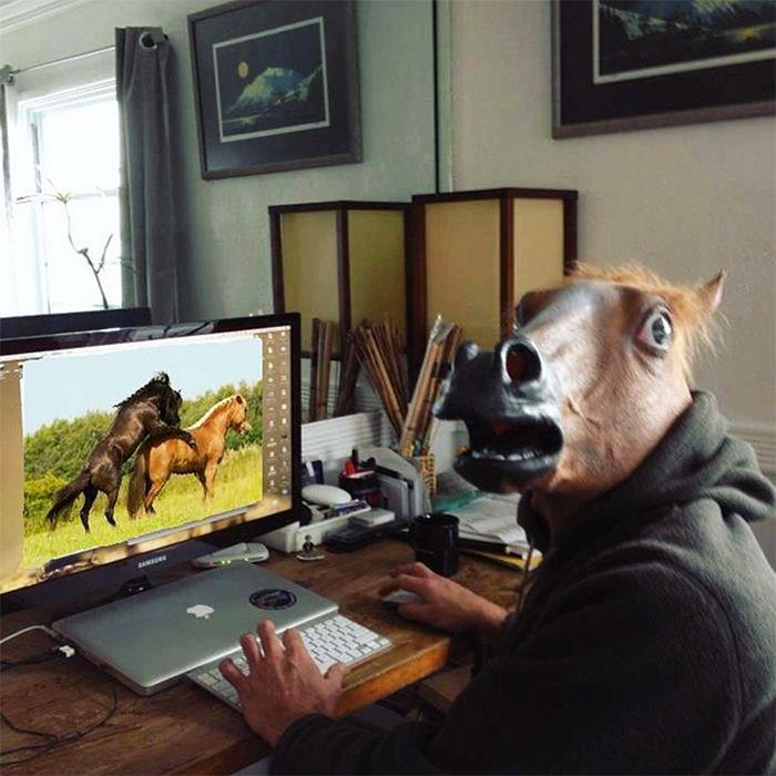 As pessoas ao redor do mundo curtindo a vida em máscaras de cavalo 13
