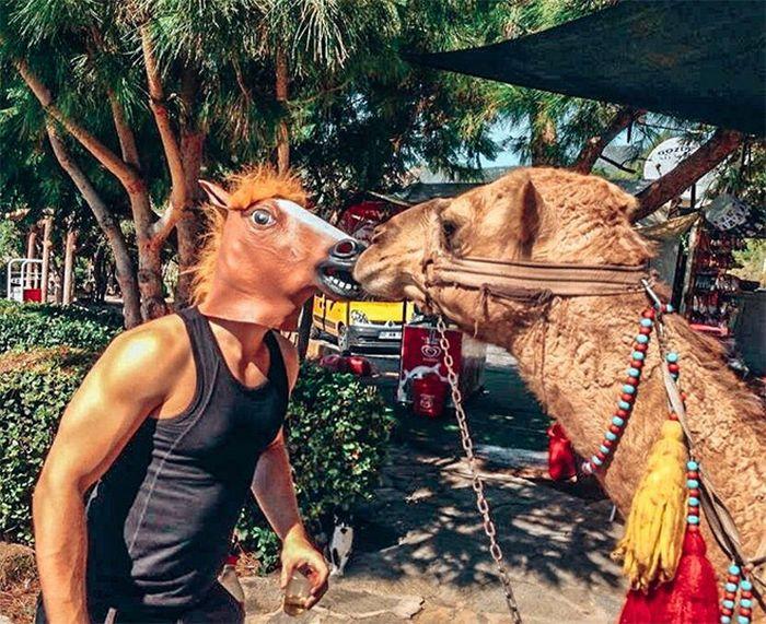 As pessoas ao redor do mundo curtindo a vida em máscaras de cavalo 17