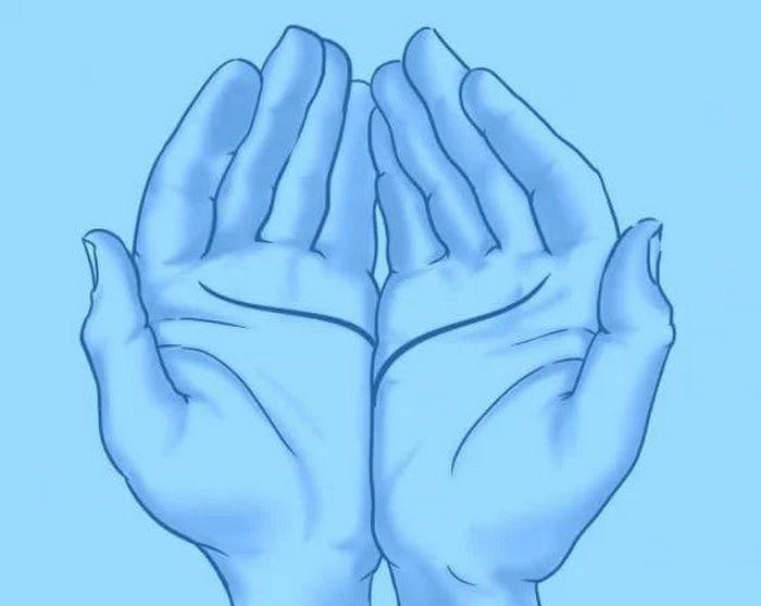 As linhas da sua mão revela algo incrível sobre você 3