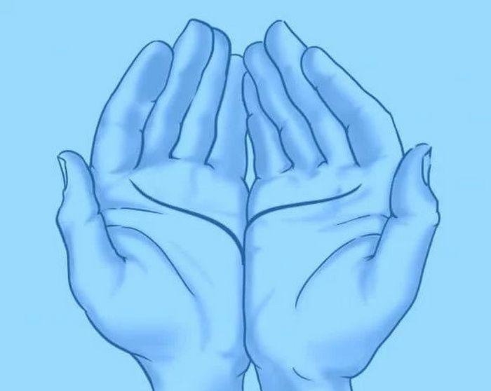 As linhas da sua mão revela algo incrível sobre você 5