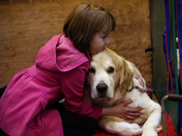 9 incríveis coisas que nossos cachorros podem prever 6