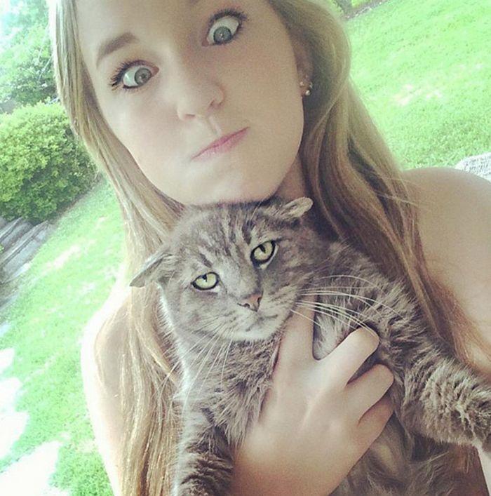 22 gatos odeiam abraços 8