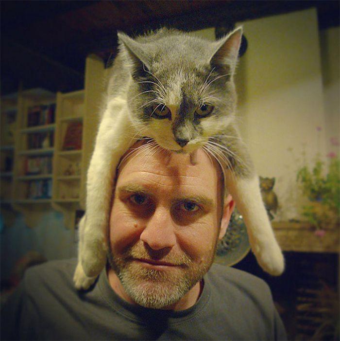 Tendência de moda mais recente: Gatos como chapéus (21 fotos) 13