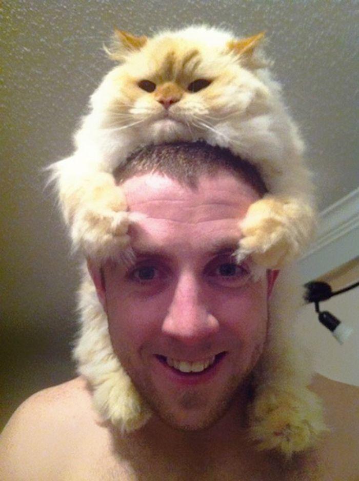 Tendência de moda mais recente: Gatos como chapéus (21 fotos) 20
